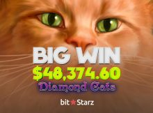 Big Slot Win at Bitstarz